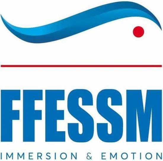 Logo ffessm