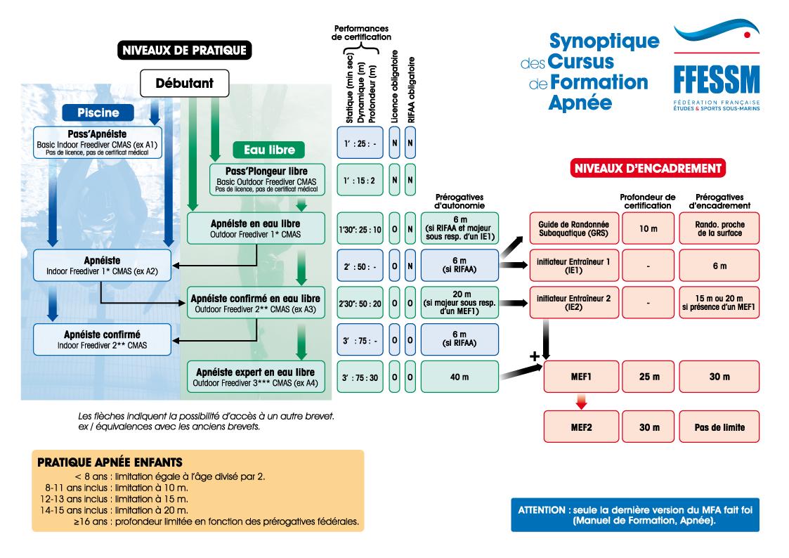 Synoptique cursus de formation